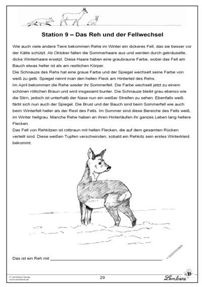 Tiere im Winter-978-3-86998-766-8